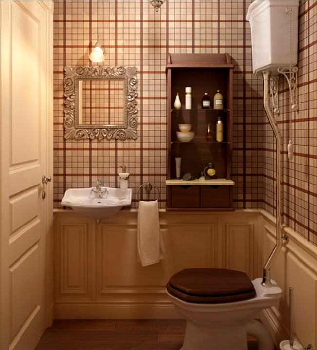 Tuvalet Açıcı Nedir ?
